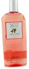 Back to Basics Raspberry Almond Shampoo Former Packaging  12oz
