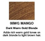 Redken Shades EQ Color 06WG Mango  2oz