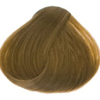 Goldwell Topchic Hair Color 8A Light Ash Blonde  21oz
