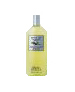 Back to Basics Green Tea Ultra Shampoo - 12 oz-Back to Basics Green Tea Ultra Shampoo
