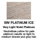 Redken Shades EQ Color 09V Platinum Ice  2oz